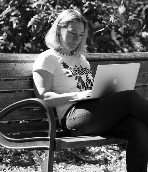virtuelle Assistentin Slider WordPress